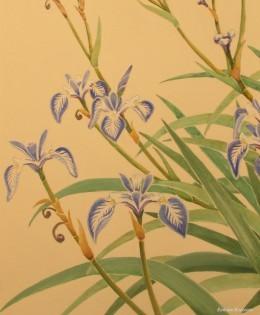 Blue Water Iris 2